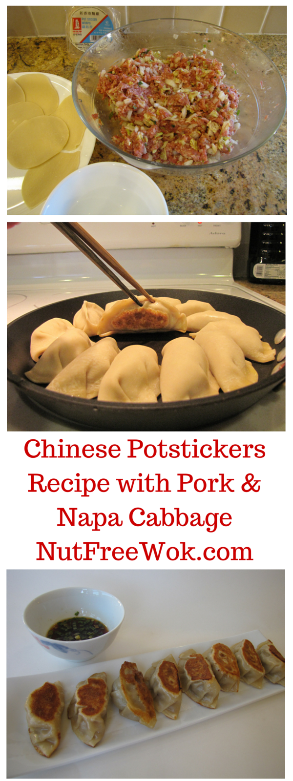 Chinese Potstickers Recipe with Pork & Napa Cabbage NutFreeWok