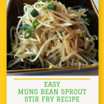Easy Mung Bean Sprouts Stir Fry Recipe